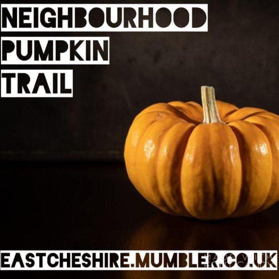 Neighbourhood Pumpkin Trail 2020